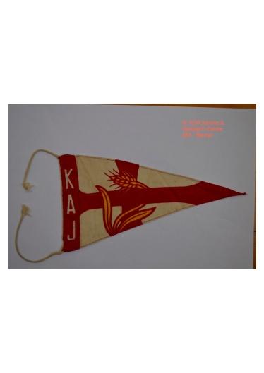 BA Flag 2 copy